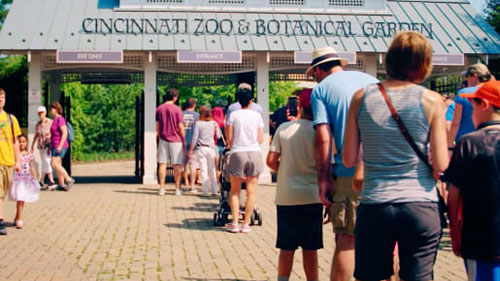 Cincinnati-Zoo-case-study-hero500
